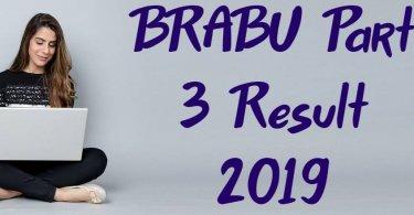 BRABU Part 3 Result 2019