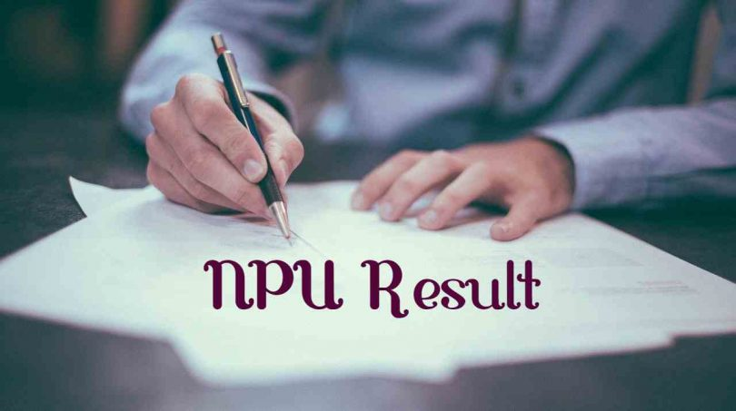 NPU Result