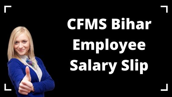CFMS Bihar Employee Salary Slip